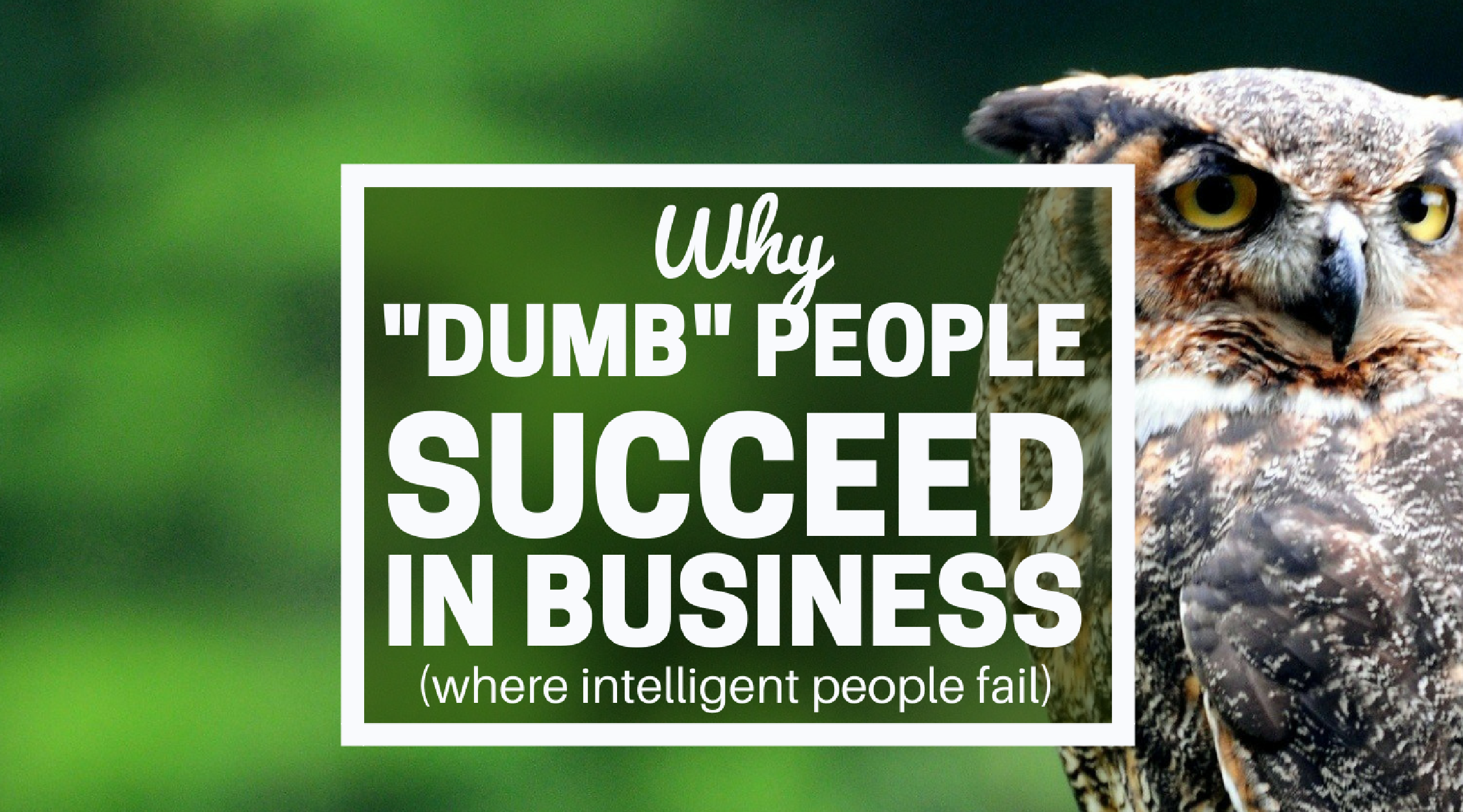 why dumb people succeed in business