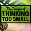 The Danger of Thinking Too Small