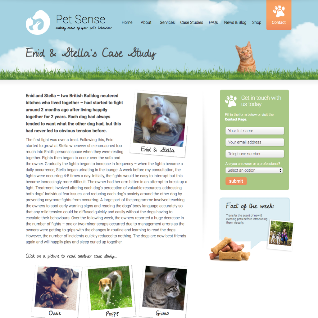 Sample Case Study: Pet Sense